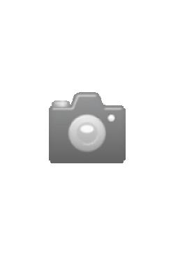Traffic 360 X